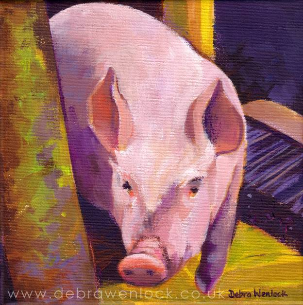 """""""This Little Piggy"""" Acrylic Painting by Debra Wenlock"""
