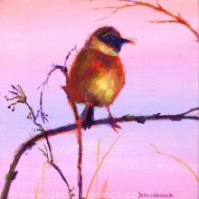 Stonechat Whinchat bird painting by Debra Wenlock