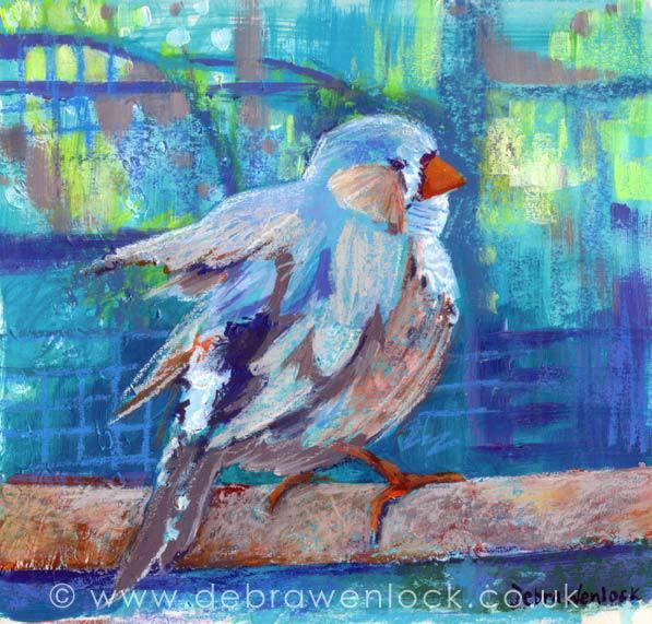 Zebra Finch, acrylic & oil pastel, the littlest birds sing the prettiest songs by Debra Wenlock