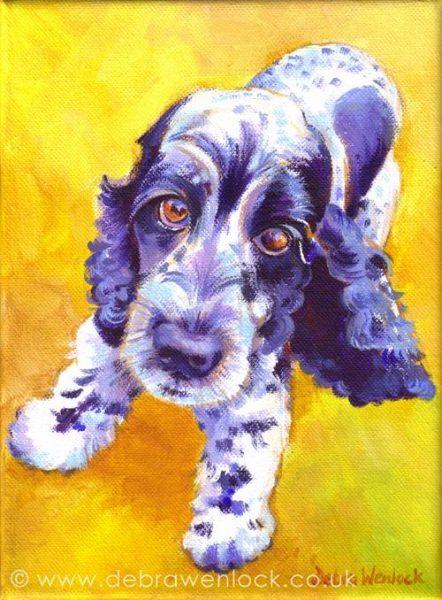 Baxter the Spaniel by Debra Wenlock