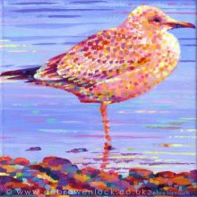 Graham the Gull seagull painting by Debra Wenlock