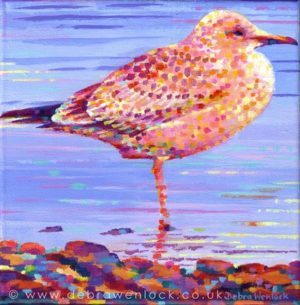 Graham the Gull seagull painting by Debra Wenlock