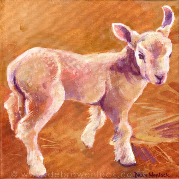 Sam the sketchy Lamb by Debra Wenlock