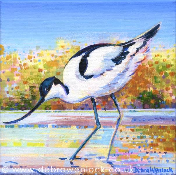 Avocet acrylic painting by Debra Wenlock