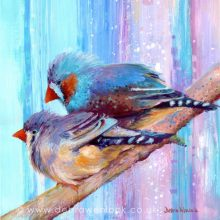 Bird paintings, Zebra Finches, acrylic painting by Debra Wenlock