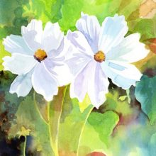 White Flowers by Debra Wenlock