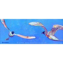 Dancing Gulls by Debra Wenlock
